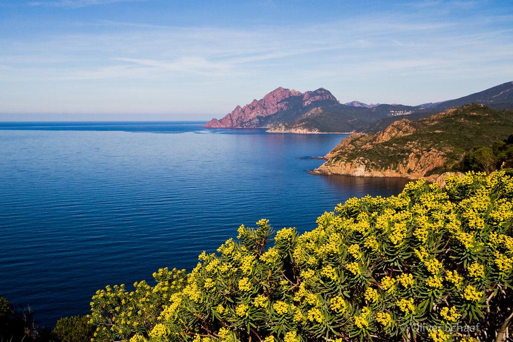 Korsika-20100318-1138.jpg